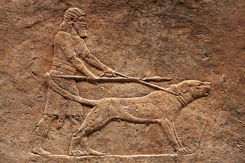 Assyrian war-guard-hunting dog Niniveh ca 645 BC