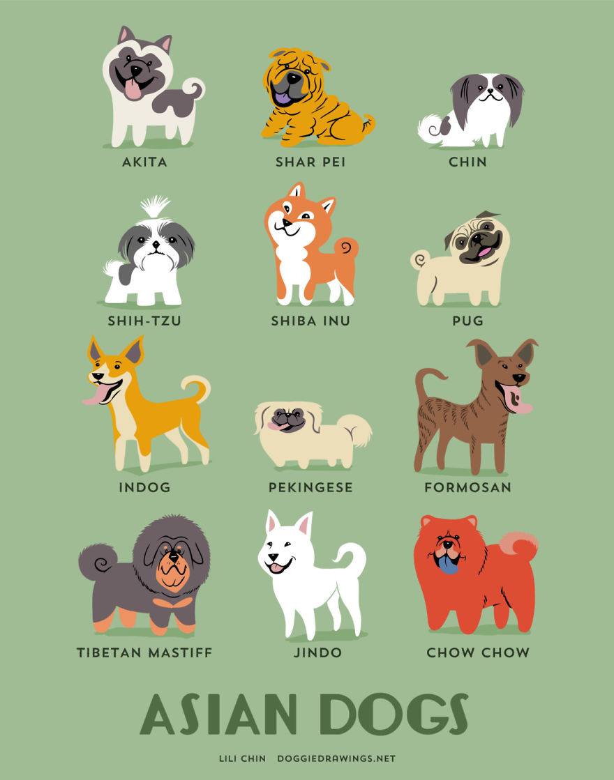Dogs-Of-The-World-Cute-Poster-Series-Shows-The-Geographic-Origin-Of-Dog-Breeds1  880