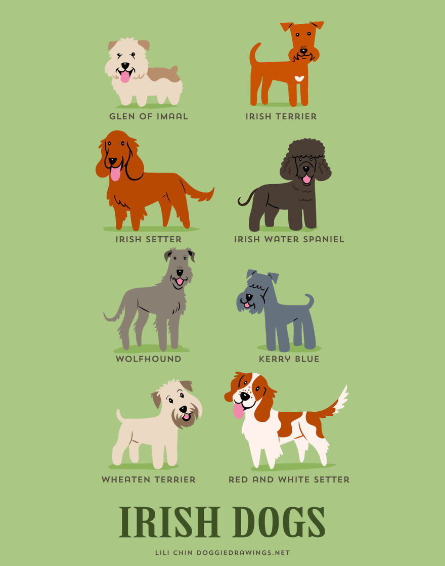 Dogs-Of-The-World-Cute-Poster-Series-Shows-The-Geographic-Origin-Of-Dog-Breeds7  880