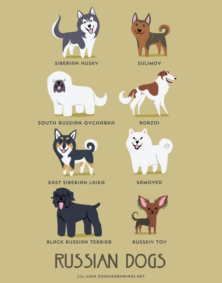 Dogs-Of-The-World-Cute-Poster-Series-Shows-The-Geographic-Origin-Of-Dog-Breeds9  880