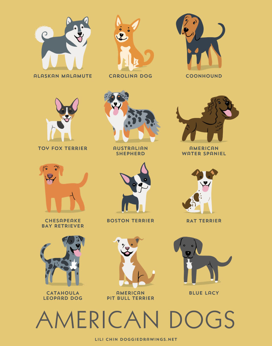Dogs-Of-The-World-Cute-Poster-Series-Shows-The-Geographic-Origin-Of-Dog-Breeds  880