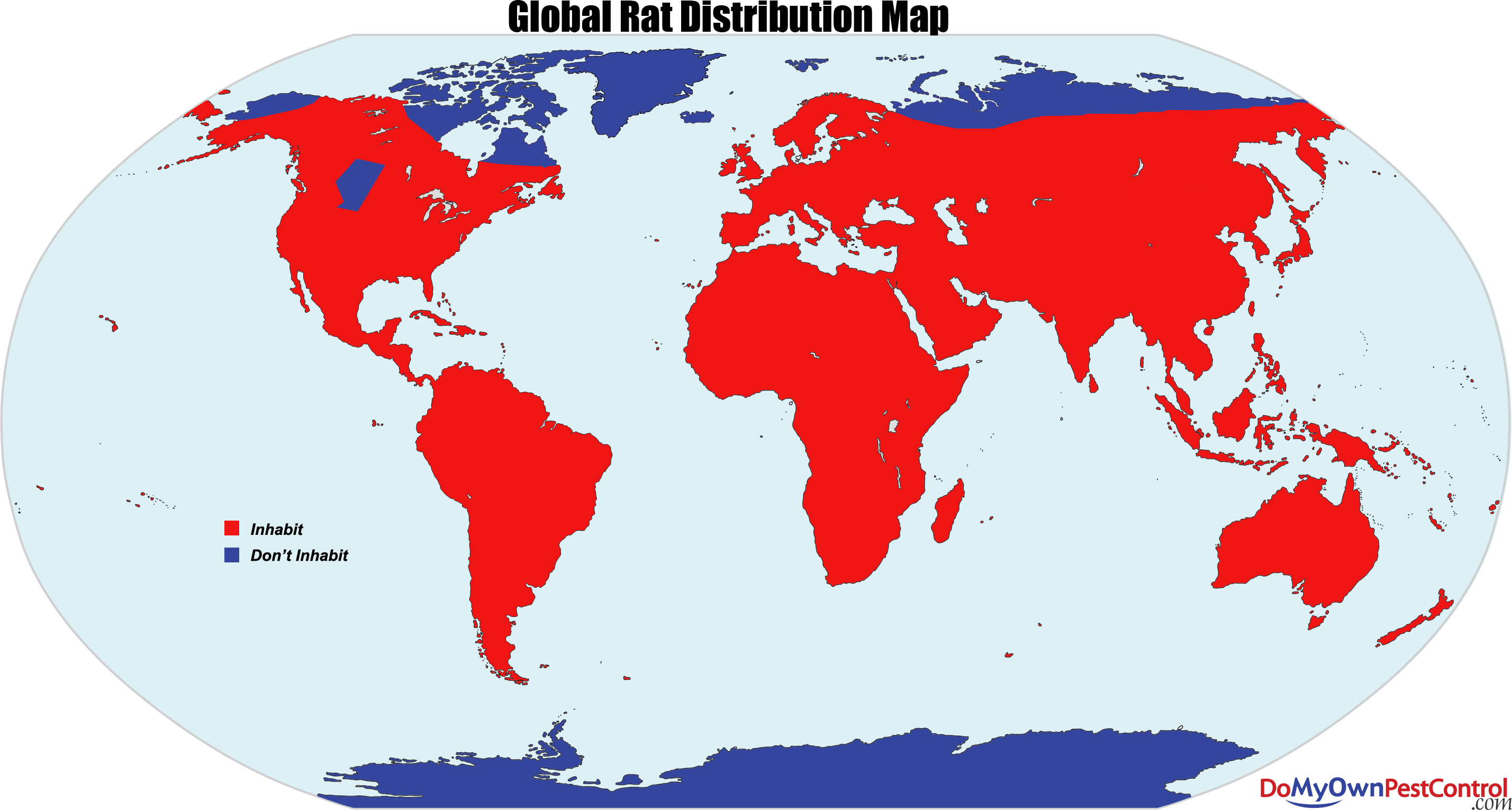 rat distribution map global