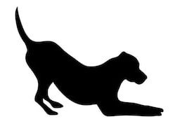 vector silhouette dog on white 260nw 717176737